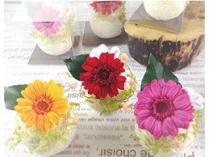 ガーベラ|敬老の日に合う花言葉