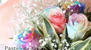 バラ|敬老の日に合う花言葉