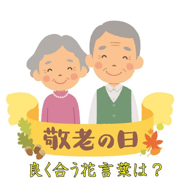 敬老の日にぴったりの花言葉|長生きや感謝の花言葉は?