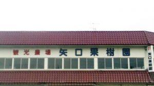 矢口果樹園|茨城県の栗拾いが出来るおすすめのスポット