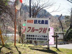 旅名観光農園フルーツ村|千葉県でおすすめの栗拾いスポット