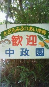 中政園|大阪の栗拾いが出来るおすすめスポット