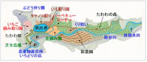 農業庭園たわわ|大阪の栗拾いが出来るおすすめスポット