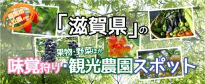 滋賀県の味覚狩り・観光農園のイラスト