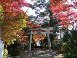 西江寺|箕面の紅葉スポット