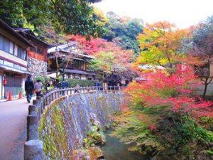 箕面の紅葉の風景