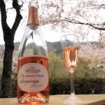 花見にはシャンパンがおすすめ!花見が楽しめるシャンパンイベントも紹介