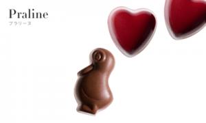 プラリーヌ|ピエールマルコリーニのチョコの種類