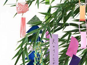 七夕祭りの笹