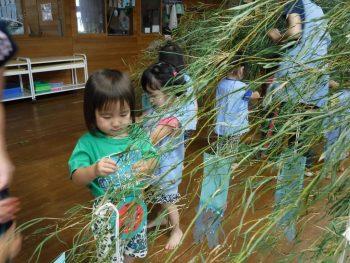 笹に短冊を付ける子供