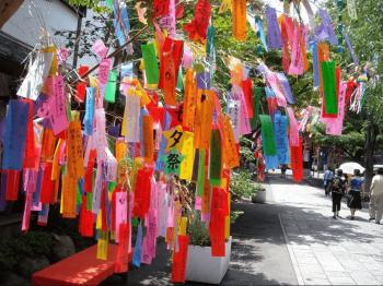 北海道 七夕祭り