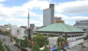 隅田川花火が見えるスポット|両国国技館