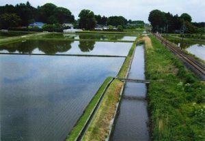 下柳田南公民館周辺の農道