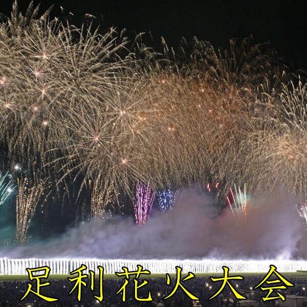 足利花火大会2019|日程・有料席・穴場・足利夏まつりを紹介!