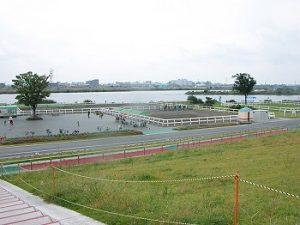 江戸川区花火大会の穴場スポット|篠崎ポニーランド