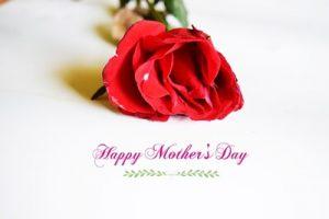 母の日にバラのプレゼント