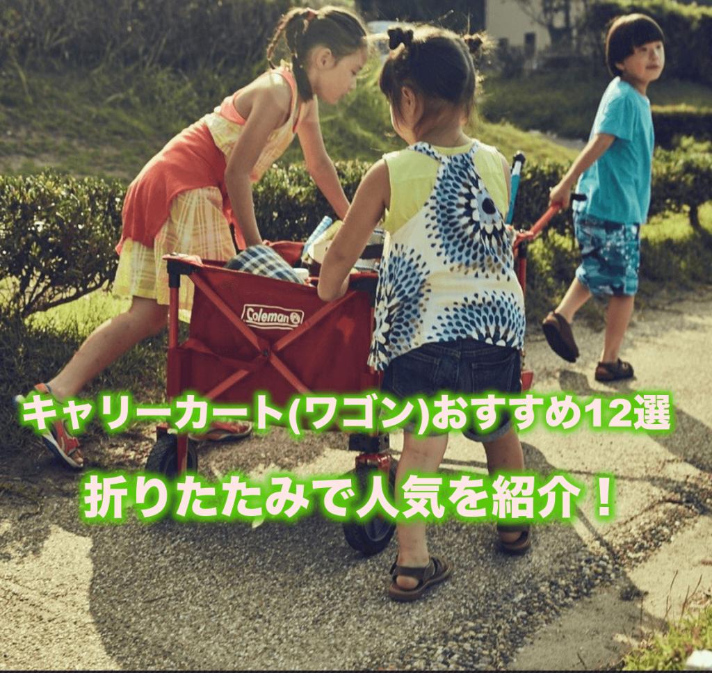 キャリーカート(ワゴン)おすすめ12選|折りたたみで人気を紹介!